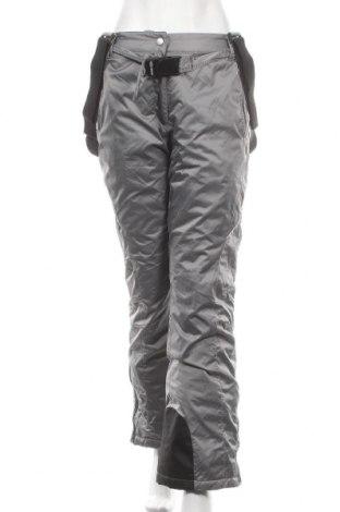 Дамски панталон за зимни спортове Double speed, Размер S, Цвят Сив, Полиамид, Цена 15,99лв.