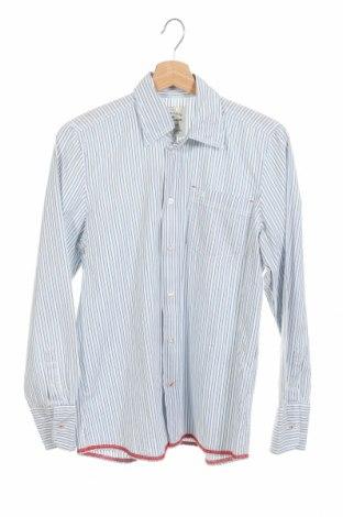 Παιδικό πουκάμισο Tom Tailor, Μέγεθος 15-18y/ 170-176 εκ., Χρώμα Μπλέ, Τιμή 11,43€
