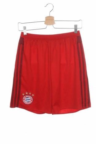 Παιδικό κοντό παντελόνι Adidas, Μέγεθος 15-18y/ 170-176 εκ., Χρώμα Κόκκινο, Πολυεστέρας, Τιμή 15,43€
