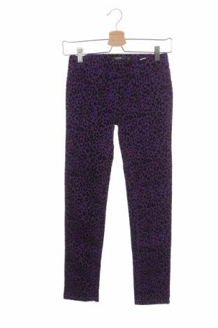 Dětské kalhoty  George, Velikost 9-10y/ 140-146 cm, Barva Fialová, 98% bavlna, 2% elastan, Cena  446,00Kč