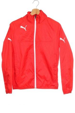 Dětská sportovní bunda  PUMA, Velikost 13-14y/ 164-168 cm, Barva Červená, Polyamide, Cena  765,00Kč