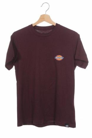Ανδρικό t-shirt Dickies, Μέγεθος XS, Χρώμα Βιολετί, 100% βαμβάκι, Τιμή 17,68€