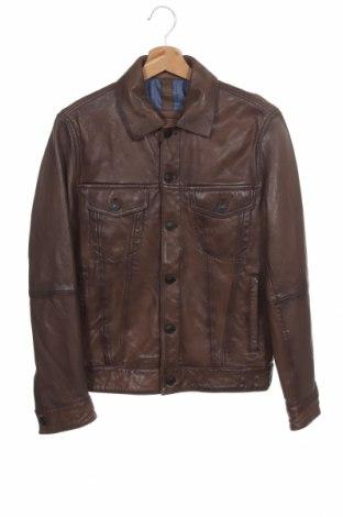 Pánská kožená bunda  Massimo Dutti, Velikost S, Barva Hnědá, Pravá kůže, Cena  3148,00Kč