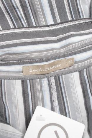 Γυναικείο πουκάμισο ERIC ALEXANDRE, Μέγεθος L, Χρώμα Πολύχρωμο, 70% βαμβάκι, 30% πολυεστέρας, Τιμή 15,46€