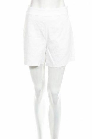 Γυναικείο κοντό παντελόνι Design By Kappahl