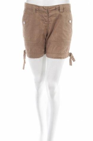 Γυναικείο κοντό παντελόνι Colours Of The World, Μέγεθος S, Χρώμα Καφέ, Βαμβάκι, Τιμή 5,09€