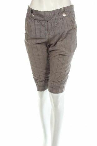 Дамски къс панталон DC Shoes, Размер M, Цвят Сив, Памук, Цена 9,00лв.