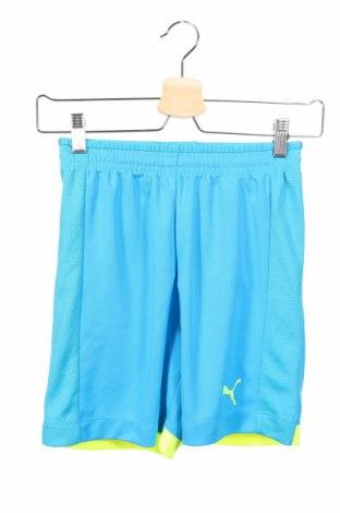 Παιδικό κοντό παντελόνι PUMA, Μέγεθος 10-11y/ 146-152 εκ., Χρώμα Μπλέ, Πολυεστέρας, Τιμή 14,47€