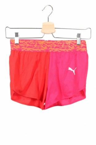 Παιδικό κοντό παντελόνι PUMA, Μέγεθος 11-12y/ 152-158 εκ., Χρώμα Ρόζ , Βαμβάκι, Τιμή 13,67€