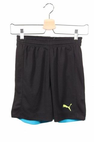 Παιδικό κοντό παντελόνι PUMA, Μέγεθος 10-11y/ 146-152 εκ., Χρώμα Μαύρο, Πολυεστέρας, Τιμή 14,47€