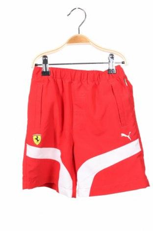 Dětské krátké kalhoty  PUMA, Rozměr 4-5y/ 110-116 cm, Barva Červená, Polyester, Cena  407,00Kč