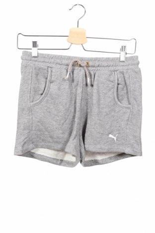 Detské krátke nohavice  PUMA, Veľkosť 15-18y/ 170-176 cm, Farba Sivá, 88% bavlna, 12% polyester, Cena  15,08€