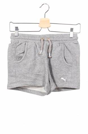 Dětské krátké kalhoty  PUMA, Rozměr 12-13y/ 158-164 cm, Barva Šedá, 88% bavlna, 12% polyester, Cena  407,00Kč