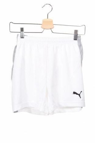 Dětské krátké kalhoty  PUMA, Rozměr 11-12y/ 152-158 cm, Barva Bílá, Polyester, Cena  407,00Kč