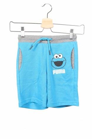 Dětské krátké kalhoty  PUMA, Rozměr 4-5y/ 110-116 cm, Barva Modrá, 72% bavlna, 28% polyester, Cena  407,00Kč