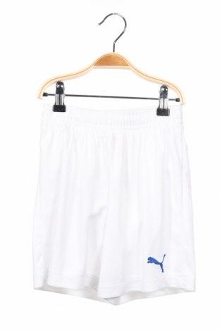 Dětské krátké kalhoty  PUMA, Rozměr 7-8y/ 128-134 cm, Barva Bílá, Polyester, Cena  407,00Kč