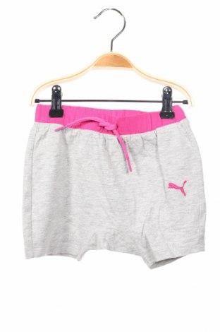 Παιδικό κοντό παντελόνι PUMA, Μέγεθος 9-12m/ 74-80 εκ., Χρώμα Γκρί, Βαμβάκι, Τιμή 12,42€