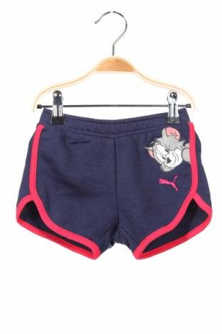 Dětské krátké kalhoty  PUMA, Rozměr 18-24m/ 86-98 cm, Barva Modrá, 70% bavlna, 30% polyester, Cena  407,00Kč