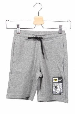 Dětské krátké kalhoty  PUMA, Rozměr 6-7y/ 122-128 cm, Barva Šedá, Bavlna, Cena  407,00Kč