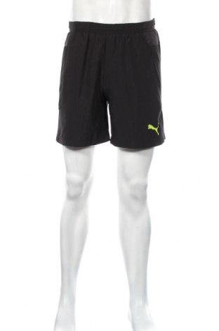 Pantaloni scurți de bărbați PUMA, Mărime M, Culoare Negru, Poliester, Preț 116,45 Lei
