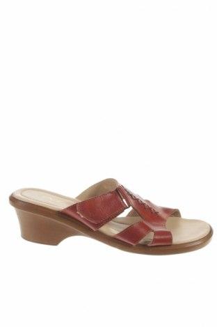 Papuci Mg