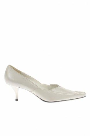 Dámske topánky  Hogl
