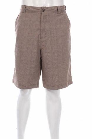 Ανδρικό κοντό παντελόνι Alpine Design