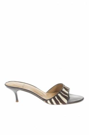 Γυναικεία παπούτσια Joseph