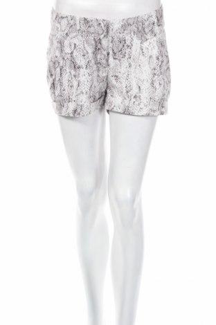 Γυναικείο κοντό παντελόνι Amisu, Μέγεθος S, Χρώμα Γκρί, Πολυεστέρας, Τιμή 4,08€