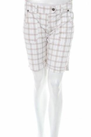 Γυναικείο κοντό παντελόνι Roco, Μέγεθος M, Χρώμα Πολύχρωμο, Βαμβάκι, Τιμή 4,86€