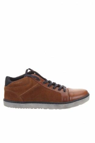 Pánske topánky Castellanisimos