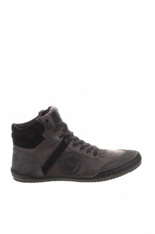 Pánske topánky Kickers
