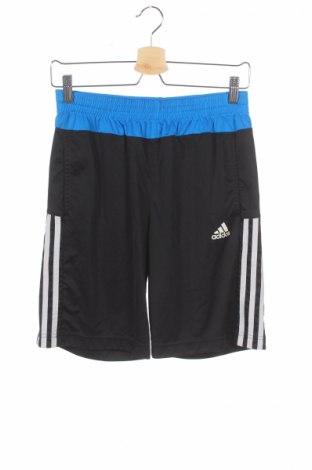 Παιδικό κοντό παντελόνι Adidas
