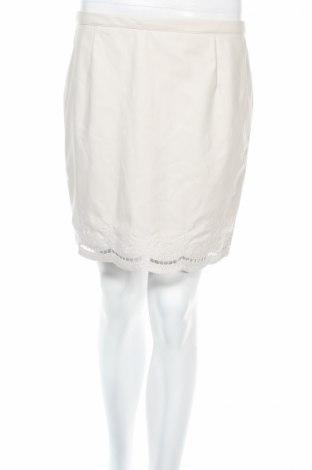 Δερμάτινη φούστα Amisu