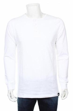 Ανδρική μπλούζα Dickies