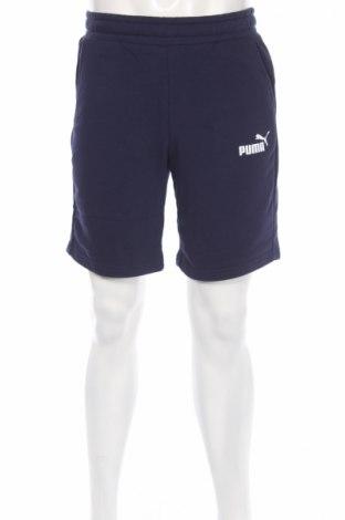 Ανδρικό κοντό παντελόνι Puma