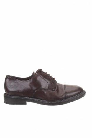 Pánske topánky Burberry