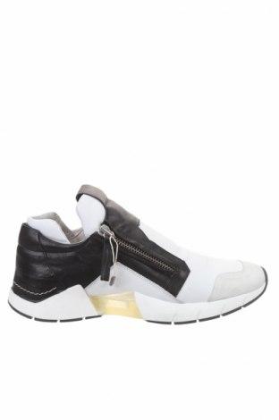 Pánske topánky Cinzia Araia