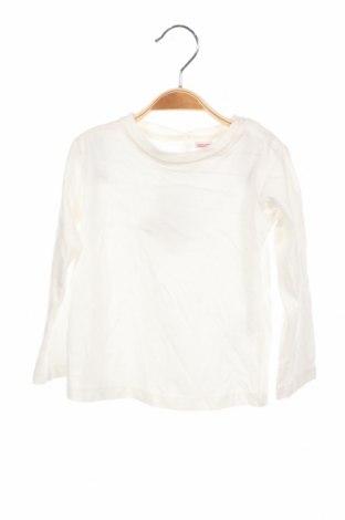 Детска блуза Lefties, Размер 12-18m/ 80-86 см, Цвят Бял, Памук, Цена 12,19лв.
