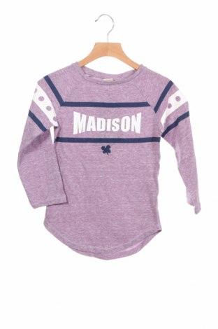 Детска блуза Madison, Размер 5-6y/ 116-122 см, Цвят Лилав, 65% памук, 35% полиестер, Цена 13,72лв.