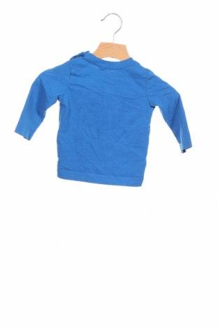 Детска блуза Tom Tailor, Размер 6-9m/ 68-74 см, Цвят Син, Памук, Цена 7,59лв.