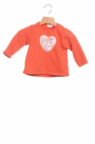 Детска блуза Tom Tailor, Размер 3-6m/ 62-68 см, Цвят Оранжев, 90% памук, 10% полиестер, Цена 18,15лв.