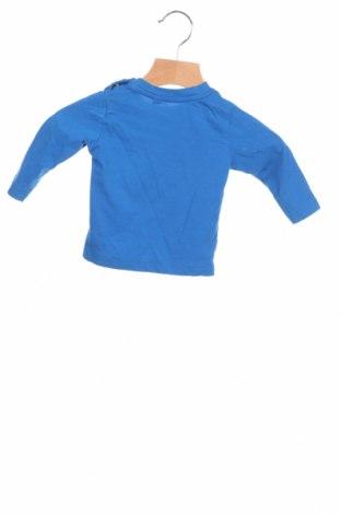 Детска блуза Tom Tailor, Размер 3-6m/ 62-68 см, Цвят Син, Памук, Цена 7,59лв.