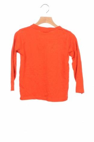 Детска блуза Tom Tailor, Размер 3-4y/ 104-110 см, Цвят Оранжев, Памук, Цена 17,49лв.