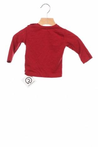 Детска блуза Tom Tailor, Размер 3-6m/ 62-68 см, Цвят Червен, Памук, Цена 15,84лв.