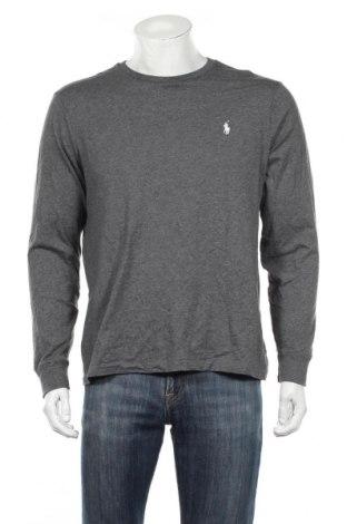 Ανδρική μπλούζα Polo By Ralph Lauren, Μέγεθος M, Χρώμα Γκρί, Βαμβάκι, Τιμή 25,23€