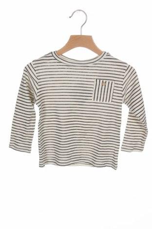 Детска блуза Little Celebs, Размер 18-24m/ 86-98 см, Цвят Екрю, Памук, Цена 9,75лв.