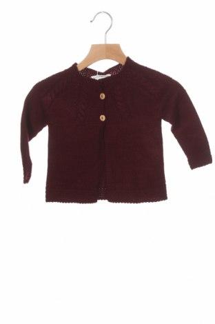 Pulover cu nasturi pentru copii Lola Palacios, Mărime 9-12m/ 74-80 cm, Culoare Roșu, Acrilic, Preț 37,83 Lei