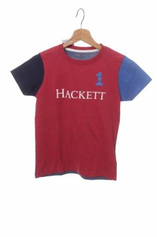 Детска тениска Hackett, Размер 7-8y/ 128-134 см, Цвят Син, Памук, Цена 11,84лв.