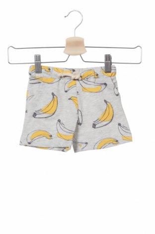 Pantaloni scurți pentru copii Lefties, Mărime 3-6m/ 62-68 cm, Culoare Gri, 80% bumbac, 20% poliester, Preț 27,66 Lei